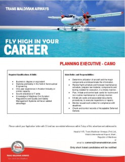 Planning Executive - CAMO