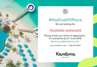 Training Manager